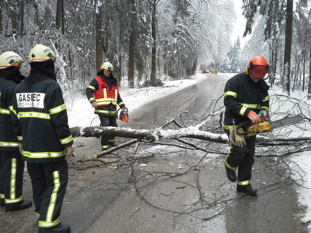 Cesta zaradi podrtega drevesa ni bila prevozna